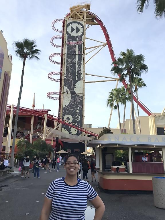 Univeral Studios Orlando Hollywood Rip Ride Rock-ItUniveral Studios Orlando Hollywood Rip Ride Rock-It