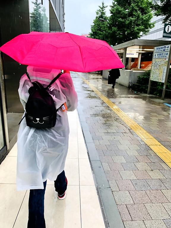 Tokyo Japan Rain