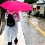 Tokyo Hayley Rain Umbrella