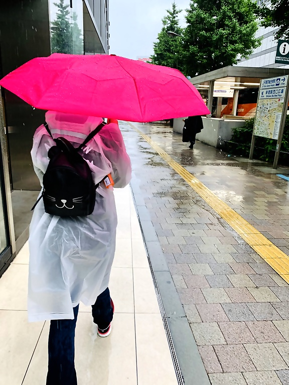 Rainy Season in Japan: 5 Easy Survival Tips