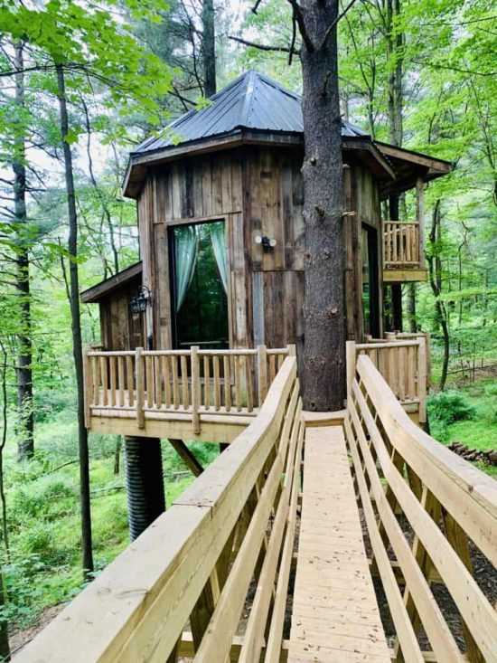 The Mohicans Treehouses El Castillo