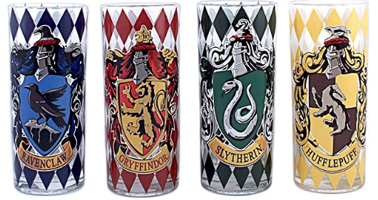 Harry Potter House Tumbler Set